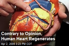 Contrary to Opinion, Human Heart Regenerates
