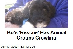 Bo's 'Rescue' Has Animal Groups Growling