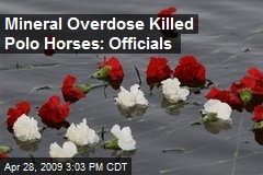 Mineral Overdose Killed Polo Horses: Officials