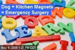 Dog + Kitchen Magnets = Emergency Surgery
