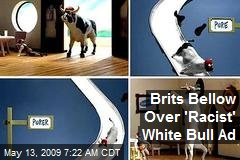 Brits Bellow Over 'Racist' White Bull Ad