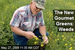 The New Gourmet Greens: Weeds