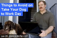 Things to Avoid on Take Your Dog to Work Day