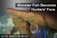 Monster Fish Becomes Hunters' Fave