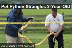 Pet Python Strangles 2-Year-Old