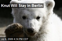 Knut Will Stay in Berlin