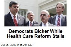Democrats Bicker While Health Care Reform Stalls