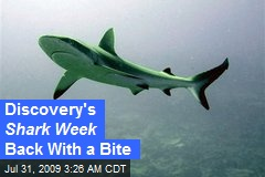 Discovery's Shark Week Back With a Bite