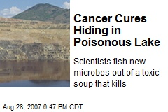 Cancer Cures Hiding in Poisonous Lake