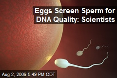 Eggs Screen Sperm for DNA Quality: Scientists