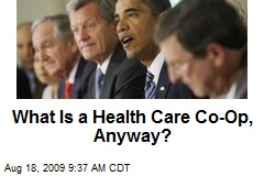What Is a Health Care Co-Op, Anyway?