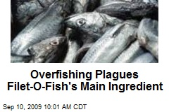 Overfishing Plagues Filet-O-Fish's Main Ingredient
