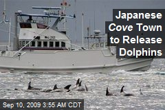 Japanese Cove Town to Release Dolphins