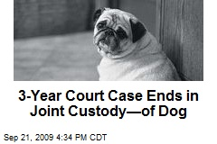 3-Year Court Case Ends in Joint Custody—of Dog