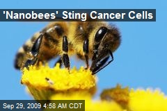 'Nanobees' Sting Cancer Cells