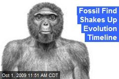 Fossil Find Shakes Up Evolution Timeline
