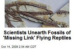 Scientists Unearth Fossils of 'Missing Link' Flying Reptiles