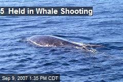 5 Held in Whale Shooting