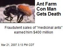 Ant Farm Con Man Gets Death