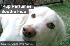 'Pup Perfumes' Soothe Fido