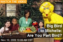 Big Bird to Michelle: Are You Part Bird?