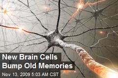 New Brain Cells Bump Old Memories