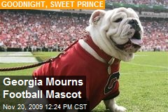 Georgia Mourns Football Mascot