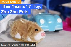 This Year's 'It' Toy: Zhu Zhu Pets