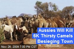 Aussies Will Kill 6K Thirsty Camels Besieging Town