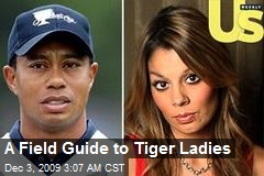 A Field Guide to Tiger Ladies