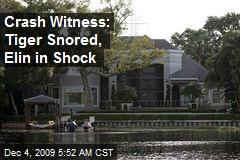 Crash Witness: Tiger Snored, Elin in Shock