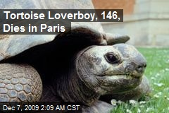 Tortoise Loverboy, 146, Dies in Paris