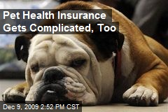 Pet Health Insurance Gets Complicated, Too