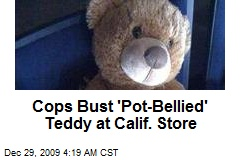 Cops Bust 'Pot-Bellied' Teddy at Calif. Store