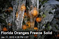 Florida Oranges Freeze Solid