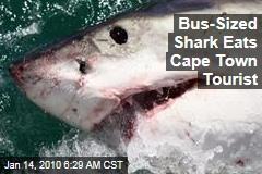 Bus-Sized Shark Eats Cape Town Tourist