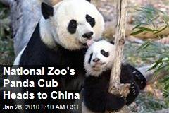 National Zoo's Panda Cub Heads to China