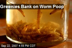 Greenies Bank on Worm Poop