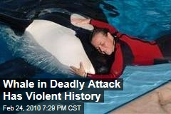 Whale in Deadly Attack Has Violent History