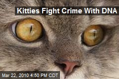 Kitties Fight Crime With DNA