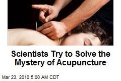 Scientists Try to Solve the Mystery of Acupuncture