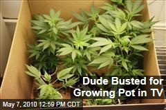 Dude Busted for Growing Pot in TV