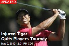 Injured Tiger Quits Players Tourney