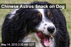 Chinese Astros Snack on Dog