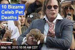 10 Bizarre Celeb Pet Deaths