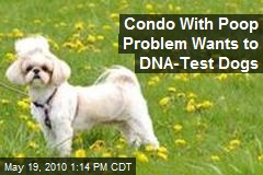 Condo With Poop Problem Wants to DNA-Test Dogs