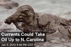 Currents Could Take Oil Up to N. Carolina