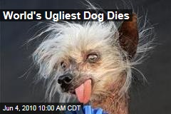World's Ugliest Dog Dies