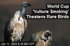 World Cup 'Vulture Smoking' Theatens Rare Birds