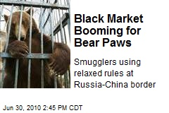 Black Market Booming for Bear Paws